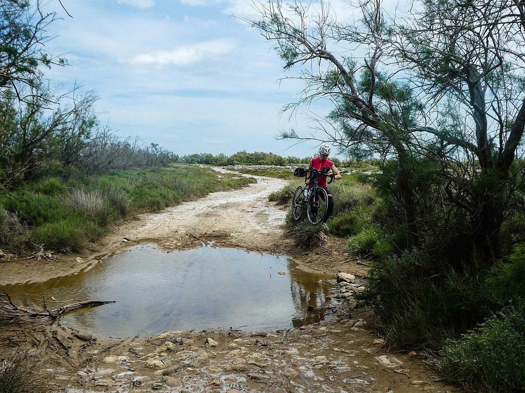 Detour ends up on the salt flats and marshlands