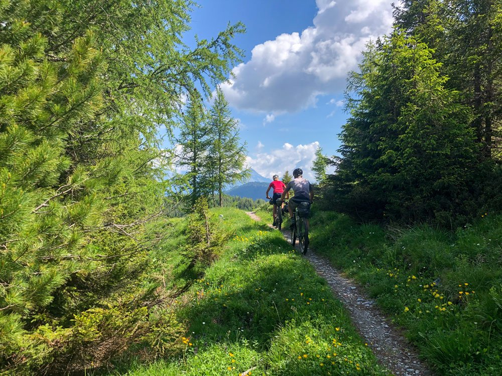 two cyclists riding single track